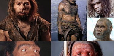 Neanderthals-Denisovans-Hominids-th
